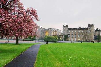 dublino clongowes wood college